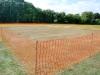 cricket-016